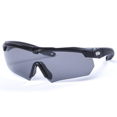 Pitcha BRACER sunglasses black/black