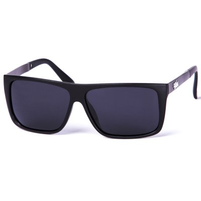 Pitcha IRONER sunglasses black/black